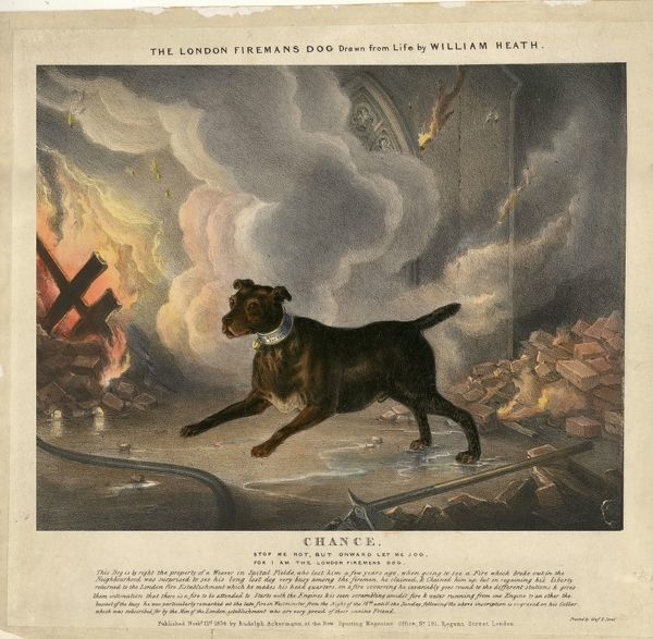 Illustration telling the story of Chance the Fire Dog: Stop me not, but onward let me jog, For I am the London Firemens Dog